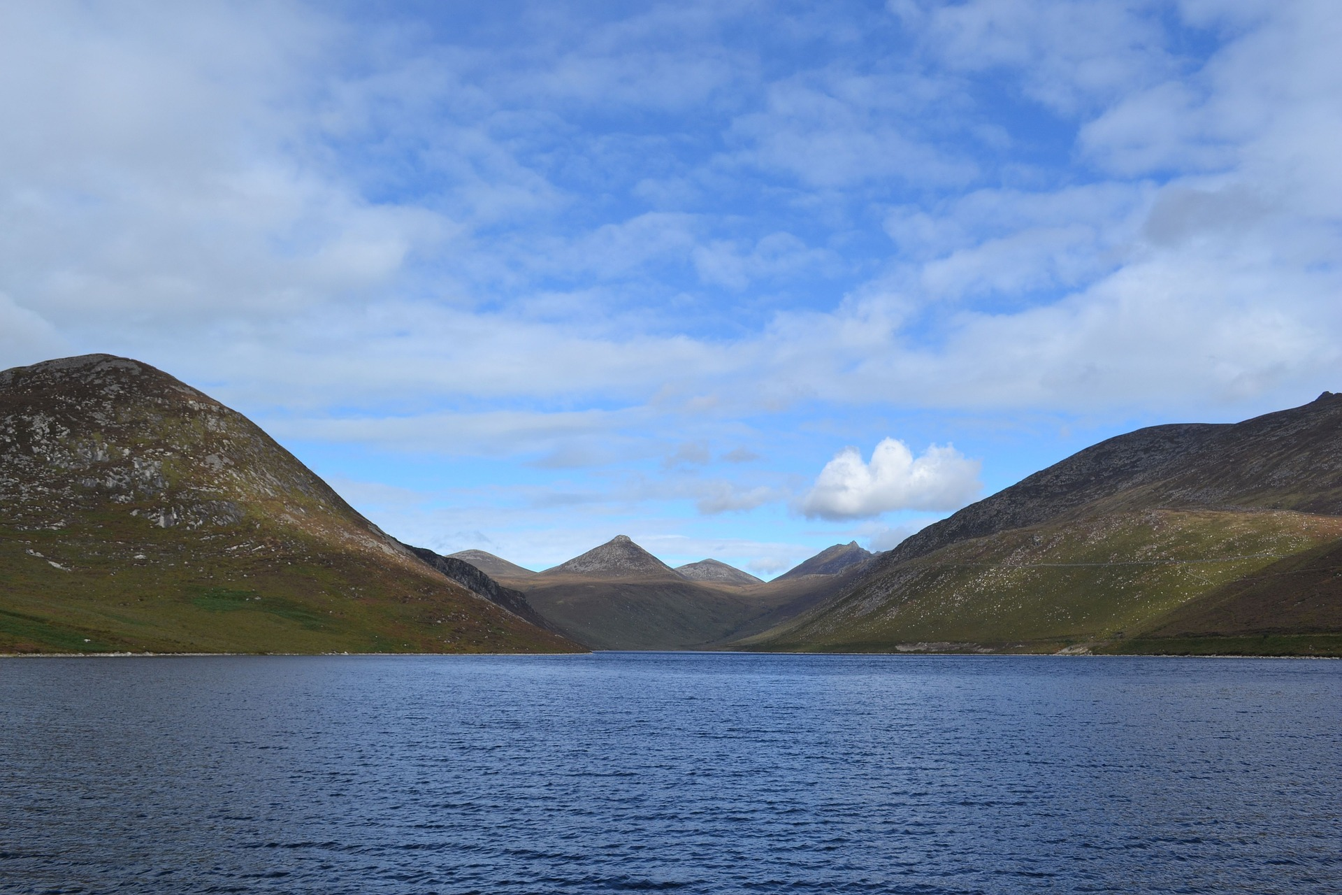 Mourne Mountains Briers